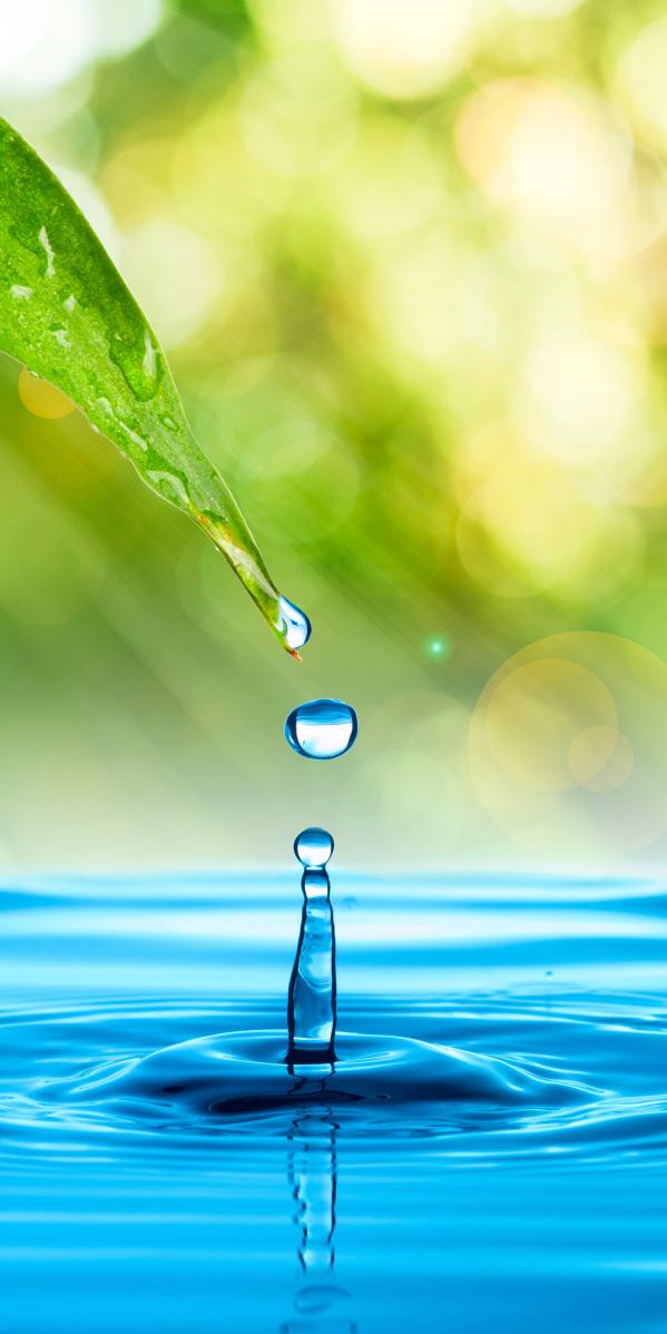 Wasser-Design